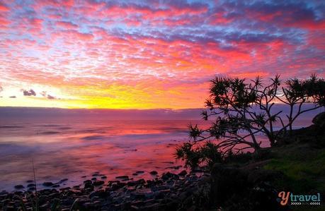 IMG_6856 ▷ Comente por qué creemos que la Costa Dorada es EL mejor lugar para vivir en Australia. Lo que debe saber al mudarse a la Costa Dorada de Australia - Tourism Tattler