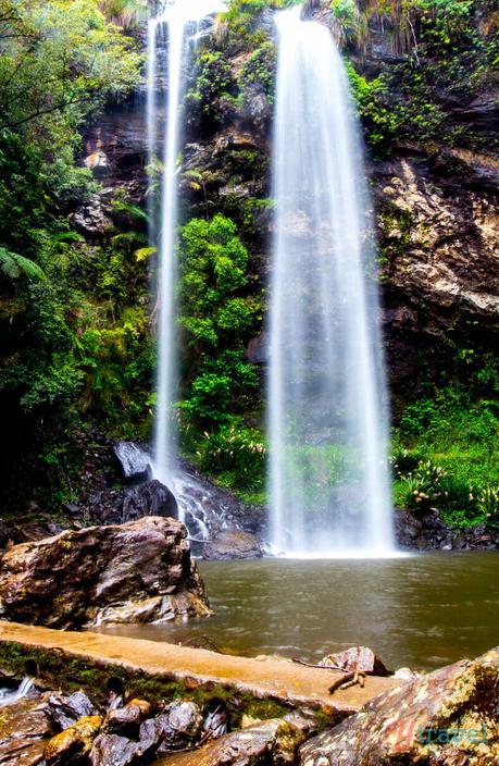 Gold-Coast-Hinterland-Queensland-16 ▷ Comente por qué creemos que la Costa Dorada es EL mejor lugar para vivir en Australia. Lo que debe saber al mudarse a la Costa Dorada de Australia - Tourism Tattler