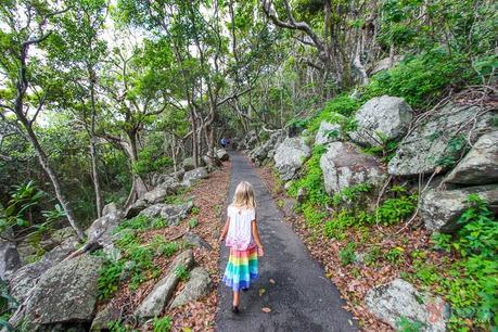 Gold-Coast-1-011 ▷ Comente por qué creemos que la Costa Dorada es EL mejor lugar para vivir en Australia. Lo que debe saber al mudarse a la Costa Dorada de Australia - Tourism Tattler