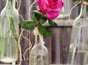 Como toque vintage casa flores