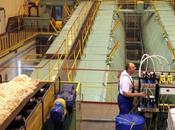 Polonia inicia privatización mayor azucarera