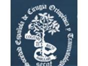 Becas Fundacion Secot España 2011