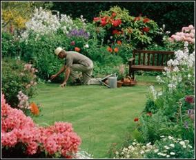 Dise o de jardines peque os paperblog for Decoracion de jardines pequenos con flores
