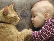 Niños animales