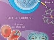 Manejo infecciones Staphylococcus Aureus resistente meticilina (SARM) (parte