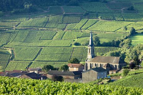 bourgogne_franche_comte ▷ 18 regiones más bellas de Francia