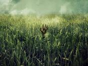 Netfix estrenará tall grass', Stephen King