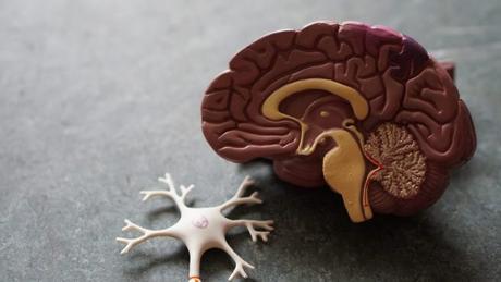 Examen de sangre para diagnosticar el Alzheimer