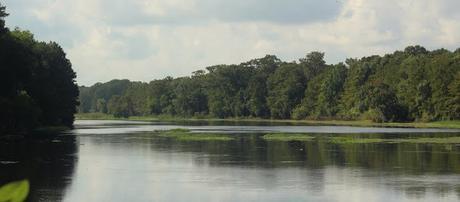 Withlacooche River al comienzo de la ruta