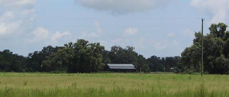 Entre los campos, fincas y bosques