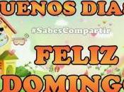 FRASES VIDEO MENSAJE buenos días feliz Domingo