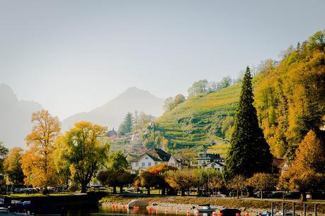 Switzerland-Fall ▷ El mejor momento para viajar a Suiza