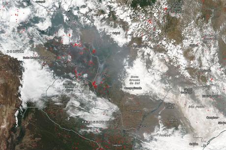 Incendios forestales en la Amazonia (19/08/2019)