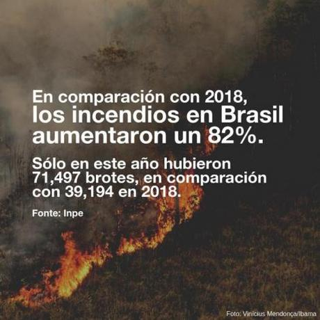 El Amazonas arde: diez imágenes que explican el incendio