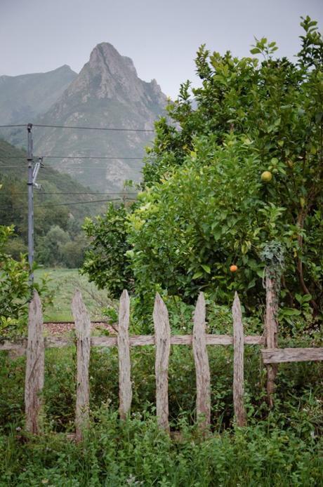 Asturias. Cuvas del Agua