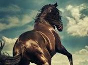 Bruce Springsteen Chasin' Wild Horses (2019)