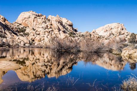 Barker-Dam-Joshua-Tree-National-Park-2 ▷ Comente sobre 30 lugares increíbles para visitar en California para su lista de deseos de California en 9 de las mejores playas de California