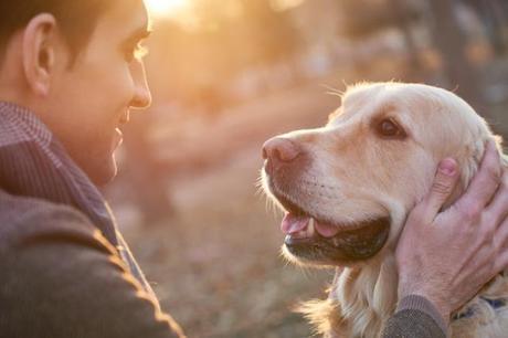 La amistad entre perro y hombre-TuParadaDigital