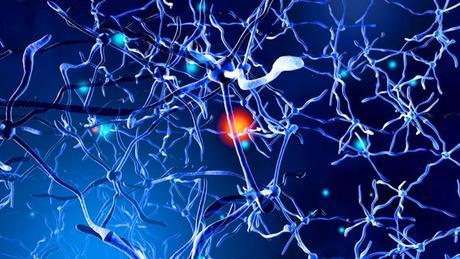 Un estudio cerebral revela un tipo de esquizofrenia similar a una enfermedad neurodegenerativa