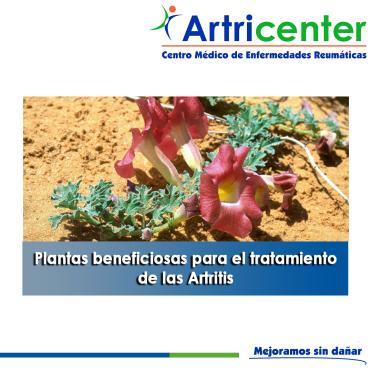 Artricenter: Plantas beneficiosas para el tratamiento de las Artritis. PARTE I