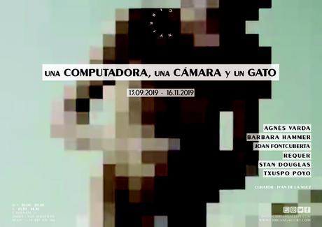 Una computadora, una cámara y un gato / El cine por el arte