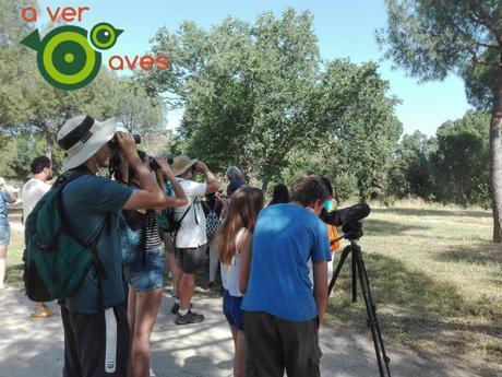 Nuevos coles, rutas con familias y Huelga Mundial por el Clima