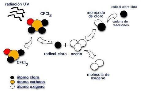 Reacción química de CFC con el ozono