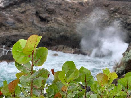 Islas Canarias. La Palma, Isla Bonita