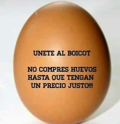 Resultado de imagen para Boicot al Huevo la razon