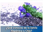 Artricenter: ¿Qué conoces Salvia hispánica Chía?