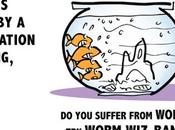 Descubre manera clara marketing contenidos través esta fantástica ilustración