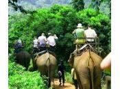 Consejos prácticos para viajar tailandia algunas curiosidades