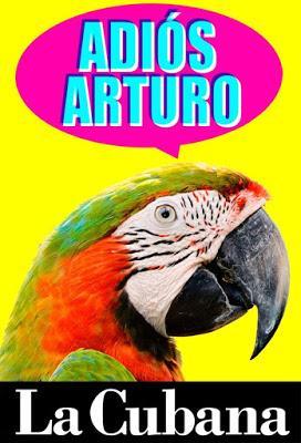 Adiós Arturo, Cubanismo En Estado Puro.