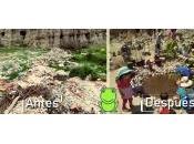 """""""Conservación Participativa"""", proyecto para recuperar colindancias Bosque Bolognia través conservación anfibios nativos"""