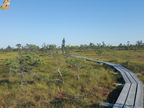 Parque Nacional de Kemeri y Jurmala