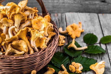 alimentos-de-temporada-de-otoño-las-setas