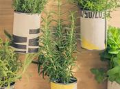 Jardinera aromáticas suprarreciclada