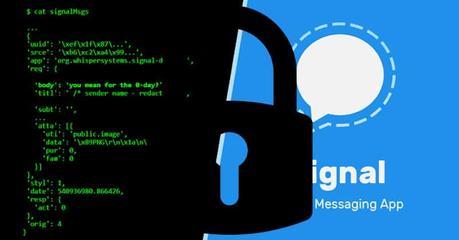 Signal es la alternativa segura a WhatsApp y Telegram