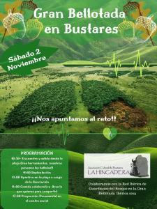 Noviembre 2.019 y sus  fiestas en la Sierra Norte de Guadalajara