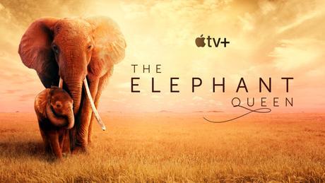 Revisión: La reina del elefante en Apple TV + es absolutamente impresionante