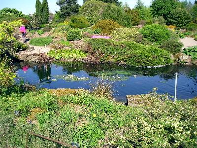 Jard n bot nico de edimburgo paperblog for Jardin botanico edimburgo