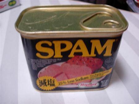 Monty Python y el spam