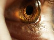 relación crítica entre optometristas oftalmólogos.
