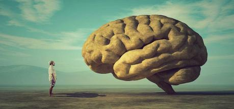 Qué es el cerebro