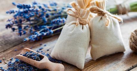sacos de lavanda y cebolla como antibiotico natural para la garganta la bolca y el resfriado