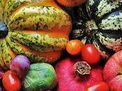 Consejos nutricionales: Alimentación Otoño