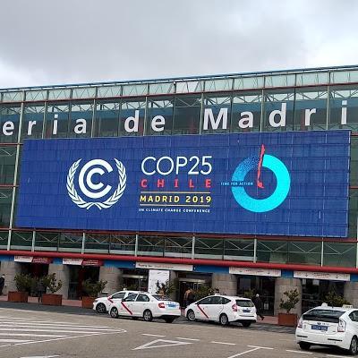 PEDRO POZAS ELEGIDO POR LA SECRETARIA DEL CAMBIO CLIMÁTICO DE LAS NACIONES UNIDAS COMO OBSERVADOR EN LA COP25