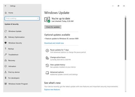 Windows Actualización del 10 de noviembre de 2019: todo lo que necesita saber