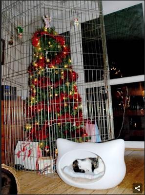 Protegiendo el árbol navideño de las garras de nuestros gatos