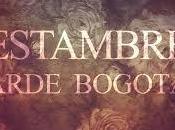 Estambre Arde Bogotá perro parte atrás coche